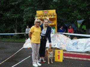 Бородинское поле и выставка собак в Смоленске